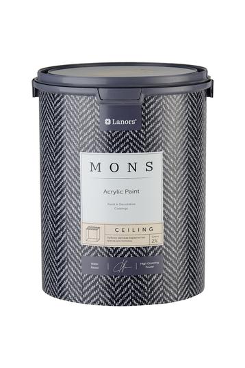 MONS CEILING - абсолютно матовая бархатистая дизайнерская краска для потолков и стен